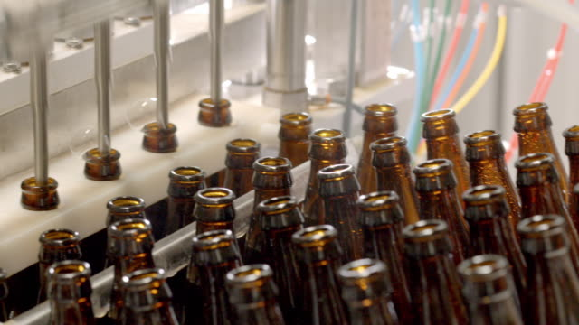 CU PAN across empty beer bottles sliding underneath fill tubes in craft brewery bottling machine as automatic bar with fill tubes descends and fills 6 bottles at a time