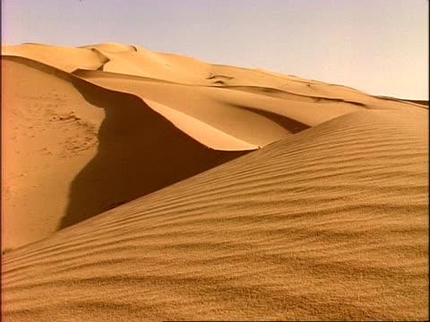 WA across golden desert sand dunes, Algeria, Africa
