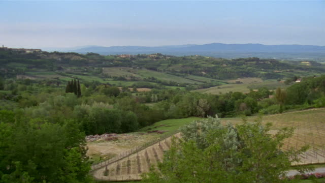 wspan across green valley+ countryside with vineyards in foreground in montepulciano / tuscany, italy - montepulciano stock videos & royalty-free footage