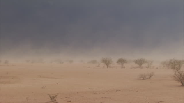 pan across sand and desert and blowing sand in sandstorm. - sandstorm stock videos & royalty-free footage