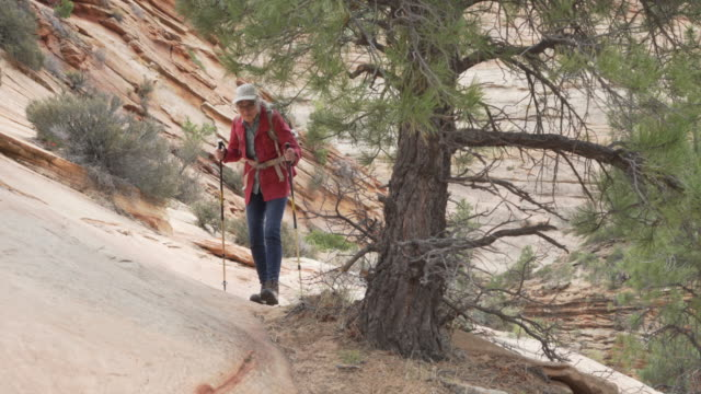 active elderly woman in retirement with hiking staffs climbing sandstone cliff - sandstone stock videos & royalty-free footage