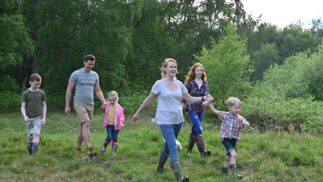 active family with four children and dog hiking in woodland - natural parkland stock videos & royalty-free footage