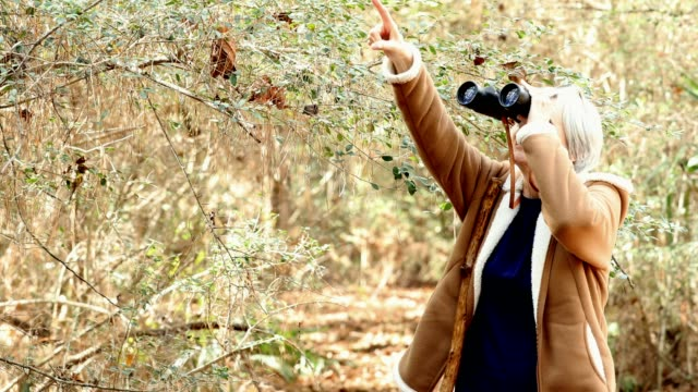 active senior adult woman hiking in wooded area.  she is bird watching with her binoculars - osservare gli uccelli video stock e b–roll