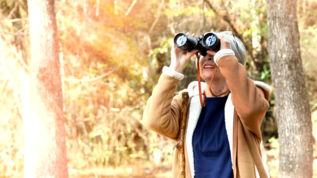 active senior adult woman hiking in wooded area.  she is bird watching with her binoculars - canocchiale video stock e b–roll