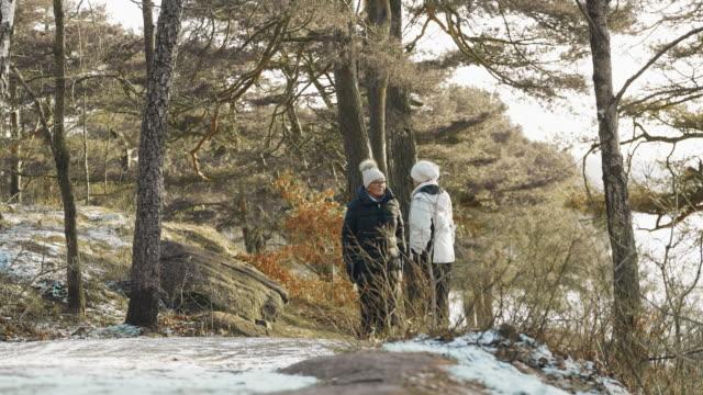 アクティブ シニア冬ハイキングのカップル - ウィンターコート点の映像素材/bロール
