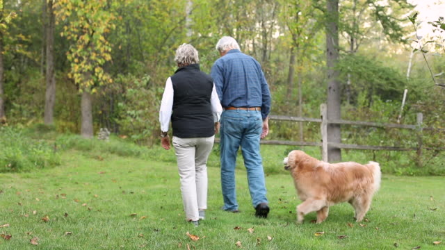 active senior couple walking with dog in vermont - outdoor pursuit video stock e b–roll