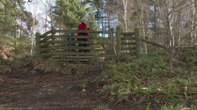 vídeos de stock, filmes e b-roll de homem sênior ativo através de um portão para uma trajectória de pé - cerca