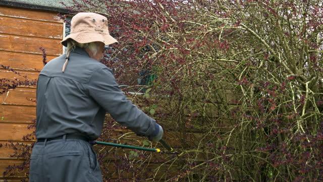 active senior man pruning a bush in a garden - gardening glove stock videos & royalty-free footage
