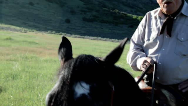 active senior man riding horse portrait - macchina da presa manuale video stock e b–roll