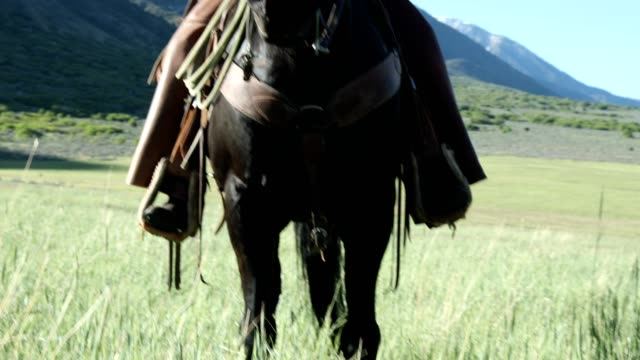 aktiven senior mann reiten pferd portrait - cowboyhut stock-videos und b-roll-filmmaterial