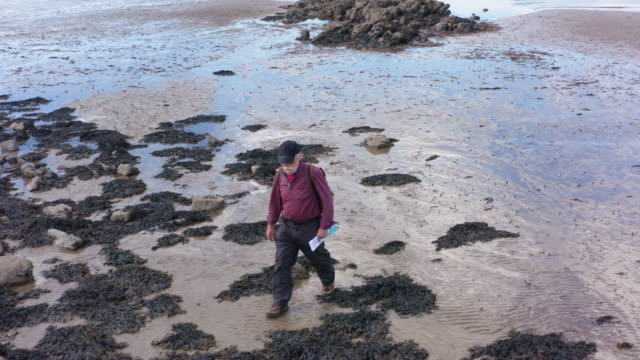 active senior man walking on the sand at low tide at the coast in dumfries and galloway south west scotland - tide map stock videos & royalty-free footage
