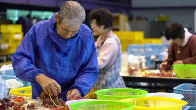 active senior team working in a factory - japanese culture stock videos & royalty-free footage