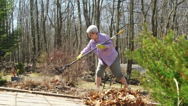 active senior woman doing spring clean-up at the backyard - 65 69 years stock videos & royalty-free footage
