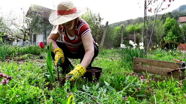 Active Senior Woman Gardening