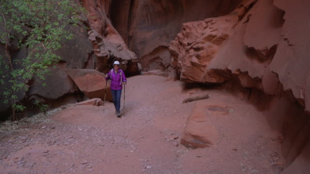 active senior woman hiking outdoors in sandstone canyon on dirt trail - sandstone stock videos & royalty-free footage