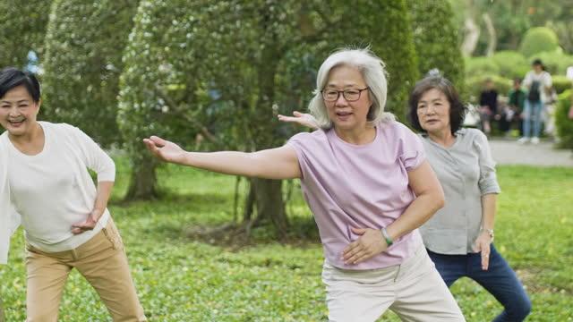 stockvideo's en b-roll-footage met actieve hogere vrouwen die tai chi in openbaar park doen - 70 79 jaar