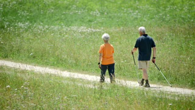 hd: active seniors nordic walking - pole stock videos & royalty-free footage