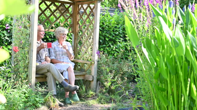 active seniors relaxing in their backyard garden gazebo - sitting stock videos & royalty-free footage