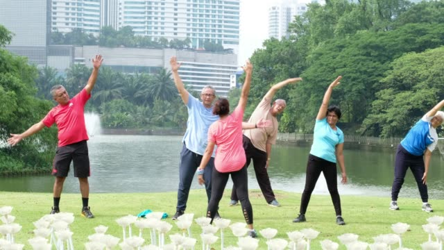 active seniors stretching in the park - arm stock videos & royalty-free footage