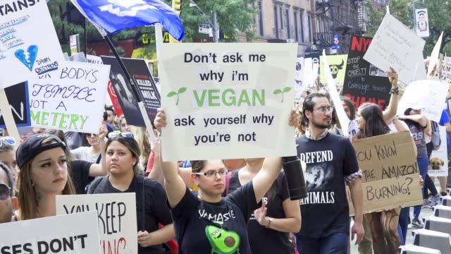 activist march via downtown manhattan's east village chanting pro-vegan slogan and distributing anti-cruelty literature and vegan educational related... - campaigner stock videos & royalty-free footage
