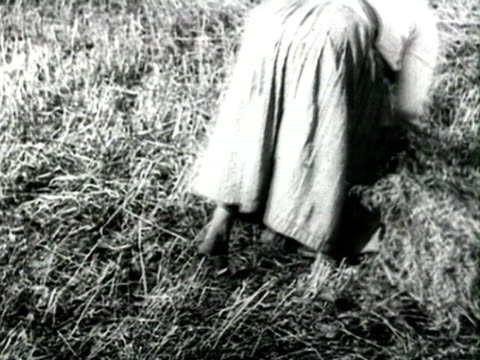ms activities in farm agricultural work in fields wheat harvest men sharpening scythes before cutting hay audio/ russia - anno 1925 video stock e b–roll