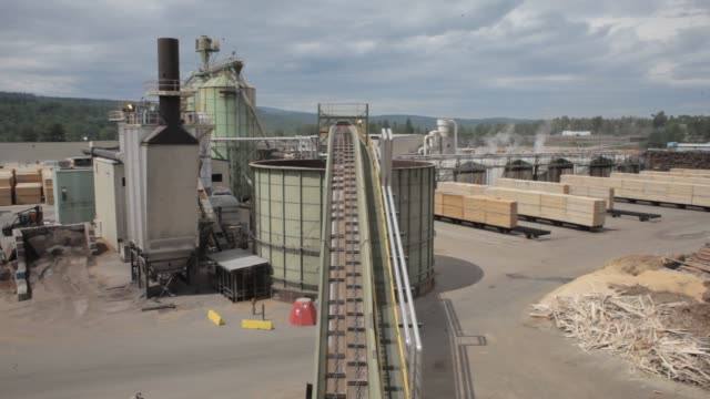 activity at the west fraser sawmill in quesnel, british columbia on june 5th, 2015. shots: wide shot of logs being fed into a heavy industrial... - alberta stock videos & royalty-free footage