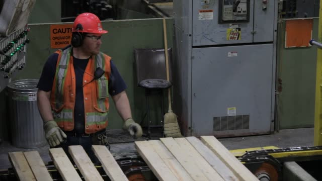 activity at the west fraser sawmill in quesnel, british columbia on june 5th, 2015 shots: wooden planks are carried by a conveyer belt along the... - timber yard stock videos & royalty-free footage