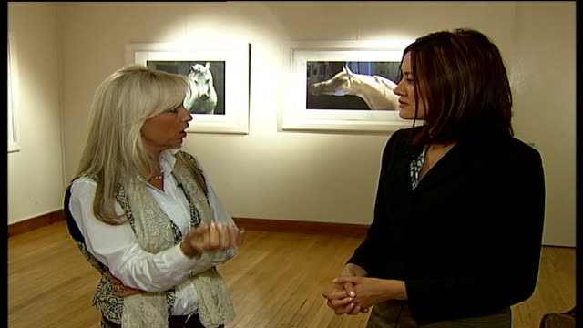 actress susan george prepares for her fine art photography debut; george interview sot - on the chemistry between her and dustin hoffman on screen - chemistry点の映像素材/bロール