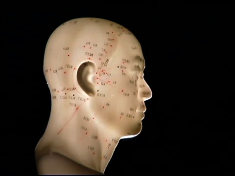 acupuncture model - acupuncture stock videos and b-roll footage