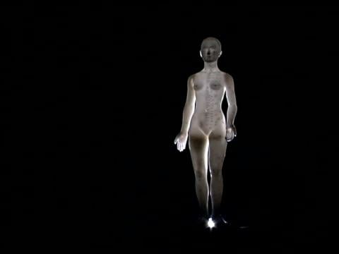 acupuncture model - 人の姿点の映像素材/bロール
