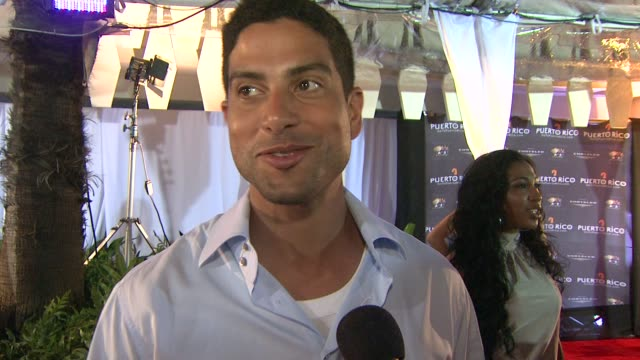adam rodriquez on what he's been doing since he's been in puerto rico on the golf tournament and on amaury nolasco and the work he's doing for... - adam rodriguez stock videos and b-roll footage