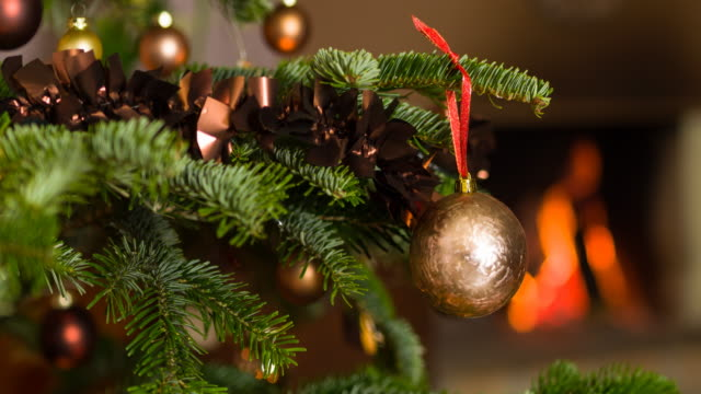 vídeos de stock e filmes b-roll de admiring the christmas tree - vista inclinada