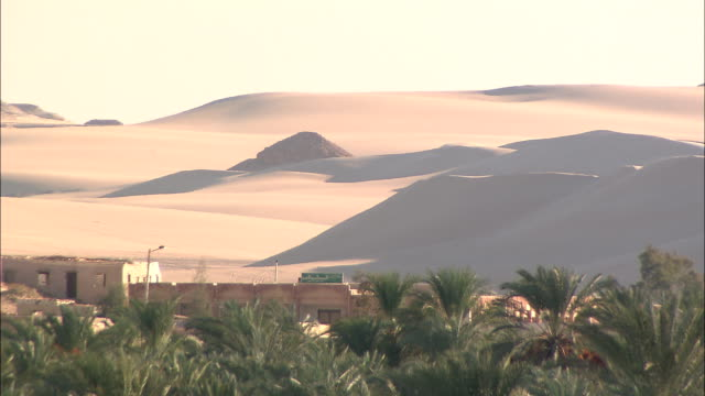 adobe buildings lie on the outskirts of an oasis. - desert oasis stock videos & royalty-free footage