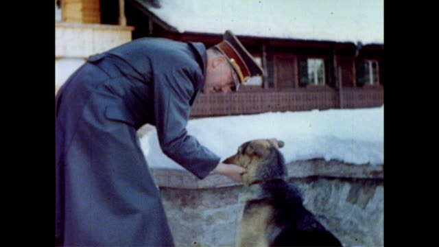 adolf hitler with his dog blondi on the snow covered terrace of berghof / blondi running towards hitler / hitler petting blondi / blondi looking... - adolf hitler stock videos & royalty-free footage