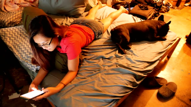 adorable black french bulldog enjoys using smart phone with asian woman on the bed. concept: pet, funny,life,communication. - pet bed stock videos and b-roll footage