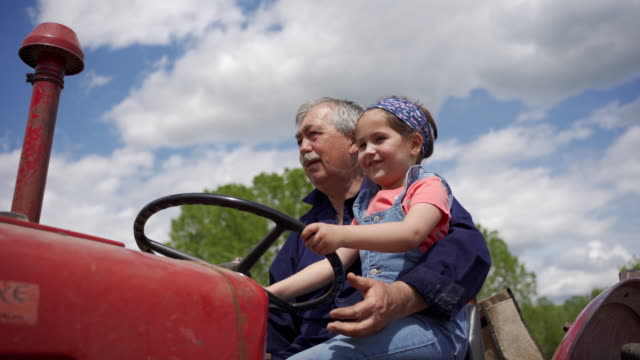 adorable girl exploring a family ranch with her granpa on a tractor - tractor stock videos & royalty-free footage