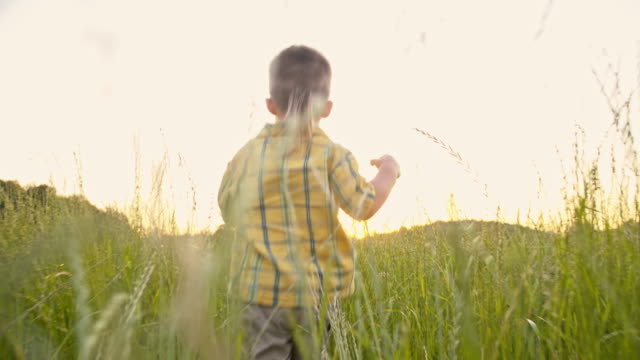 SLO MO Adorable little boy in the grass