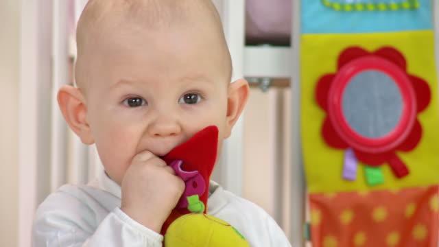 vídeos de stock, filmes e b-roll de hd: adorável bebê mordendo a toy - só um bebê menino