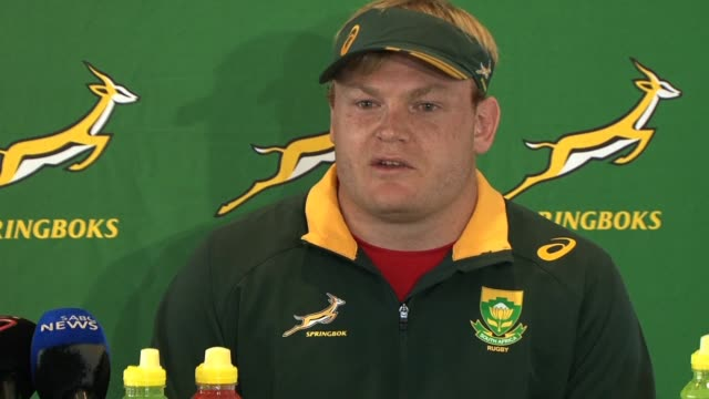adriaan strauss will captain south africa in a three test home series against ireland during june new national coach allister coetzee announces in... - stellenbosch stock videos and b-roll footage