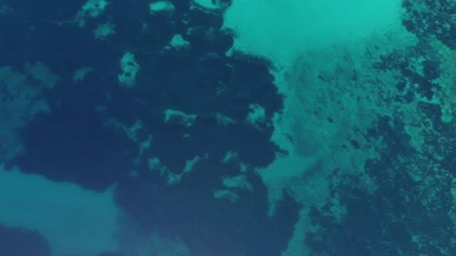 La mer Adriatique depuis directement au-dessus