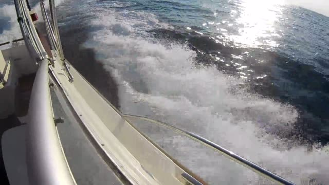 adriatic sea waves from a fast yacht - adriatic sea stock videos & royalty-free footage