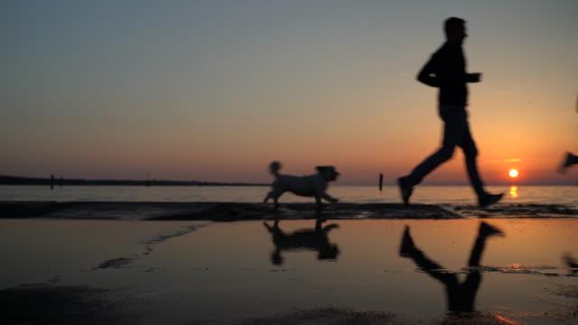 vídeos de stock, filmes e b-roll de pares adultos que funcionam no litoral com seu cão durante o por do sol - vista lateral