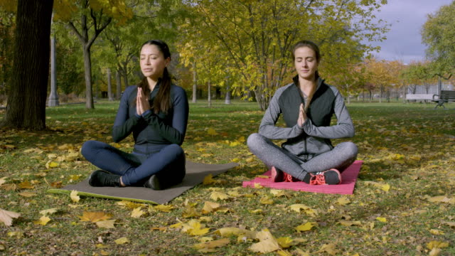 adult females doing yoga in the park - public park stock videos & royalty-free footage