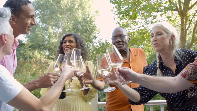 adult friends toast outside. - wine glass stock videos & royalty-free footage
