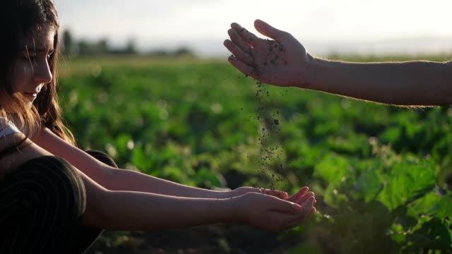 vidéos et rushes de mains d'adulte mettant la jeune plante dans les mains de la petite fille - graine