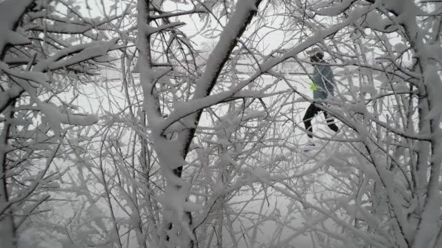 erwachsene männliche läuft durch verschneite bäume und trail im winter schneesturm - nur junge männer stock-videos und b-roll-filmmaterial