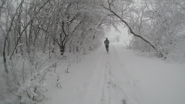 adult male runs by snow-covered trees and trail during winter snowstorm - obscured face stock videos & royalty-free footage