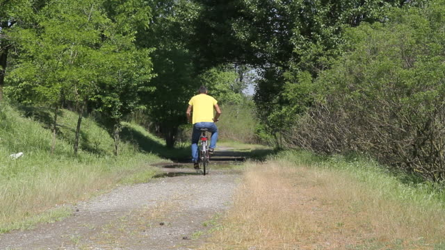 adult man cycling on country road with puddles - pjphoto69 stock videos & royalty-free footage