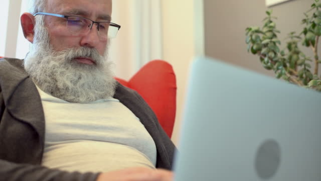 adult senior man with a gray beard working on a laptop - houseplant stock videos and b-roll footage