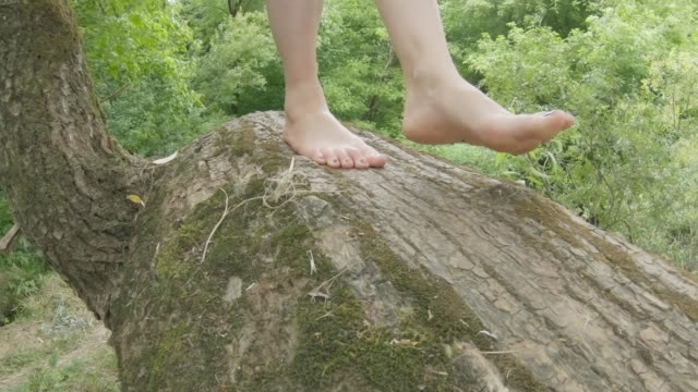 adult woman walking on tree trunk barefoot - barefoot stock videos & royalty-free footage